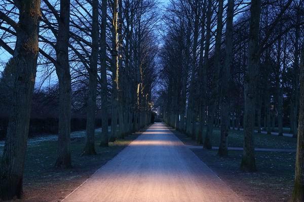 Lichtplanung Garten lichtplanung für den französischen garten in celle