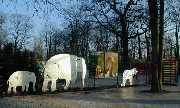 Skulpturen für die Eingangsanlage im Zoo Hannover