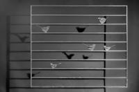 Fenstergitter mit 5 Vögeln feuerverzinkt