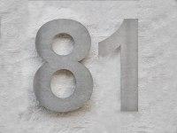 Edelstahl Hausnummer 81