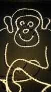 Leuchtender Affe