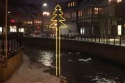 neue Tannenbäume über der Lamme in Bad Salzdetfurth