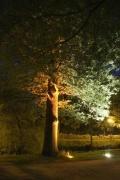 Lichtplanung franz. Garten in Celle