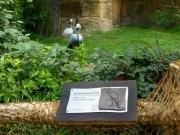 Zoo Hannover - Beschilderung für Paradieskranich