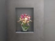 Wandhängende Blumenvase aus Stahl und Glas