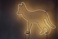 Dingo - Leuchttier für das Outback im Winter-Zoo 2011