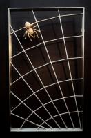 Spinnen Gitter aus Edelstahl - optional mit Bronzegußspinne