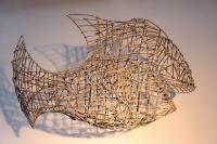 Drahtfisch