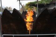 Wunderschöner Flammlachs oder Feuerlachs Stand für den Zoo Hannover