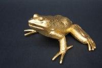 Frosch aus massivem Aluminium gegossen und mit echtem Blattgold vergoldet