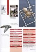 Artikel in der Hephaistos  über unser Spinnengitter