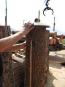 Beeindruckende Baumstammlampe mit einer Tombakhaube