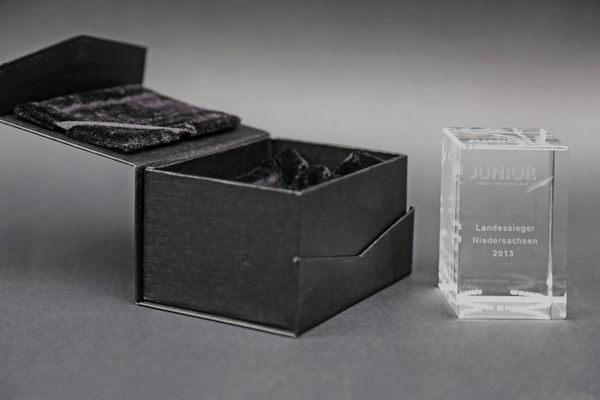 Junior Award Landessieger Niedersachsen 2013