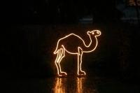 Leuchtendes Kamel aus Stahl geformt