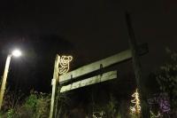 Leuchtender Koala für den Winterzoo in Hannover