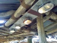 Leuchten für die Sambesi Landschaft im Zoo Hannover