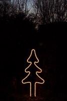 Leuchtannenbaum mit einem Lichtschlauch