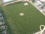 Kunst im Maisfeld - Maislabyrinth in Pattensen