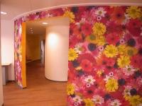 Frauenarztpraxis Mammographie Drs. Samse / Uleer in Hildesheim