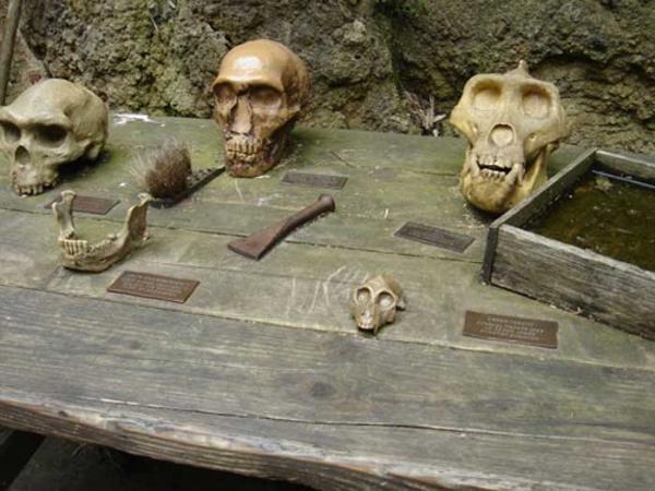 Beschilderung aus Tombak für den Tisch der Archäologen auf dem Gorillaberg im Zoo Hannover