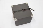 Nietenkoffer mit Metallecken und Leder Tragegurt für die Bea Awards