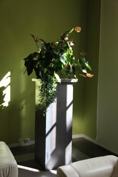 tolle Pflanztröge für die Gästeresidenz PelikanViertel in Hannover
