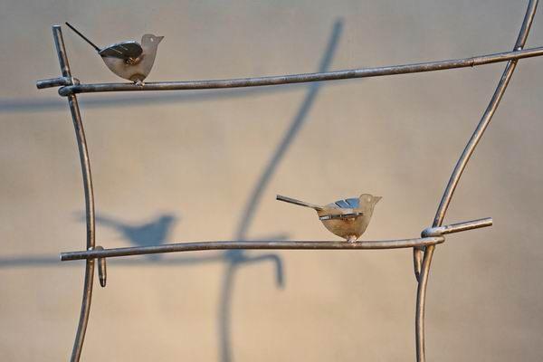 Rankgitter mit  gelaserten Stahl Vögelchen