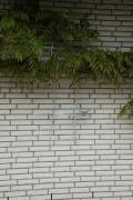 wunderbares Rankgitter aus feuerverzinktem Stahl mit gelaserten Vögeln