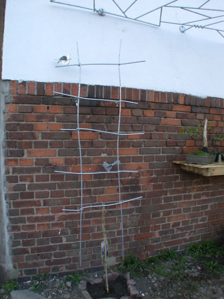 Rankgitter aus feuerverzinktem Stahl mit Vögeln