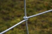 2-teiliges Rankgitter aus Rundstahl feuerverzinkt