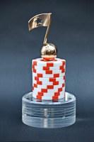 Rising Star Award für die Casinos Austria 2014