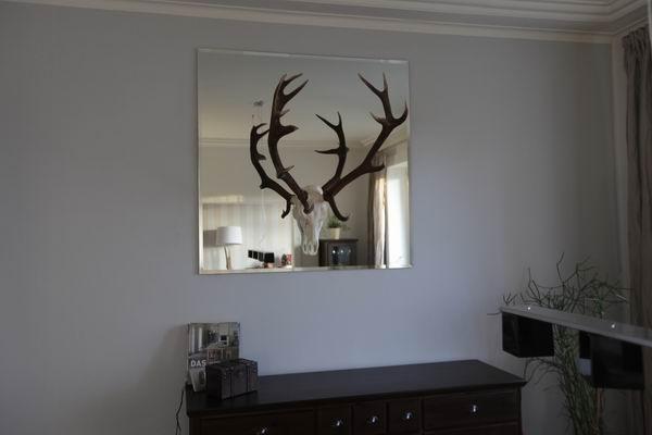 Spiegel mit einem hirschgeweih for Hirschgeweih wand