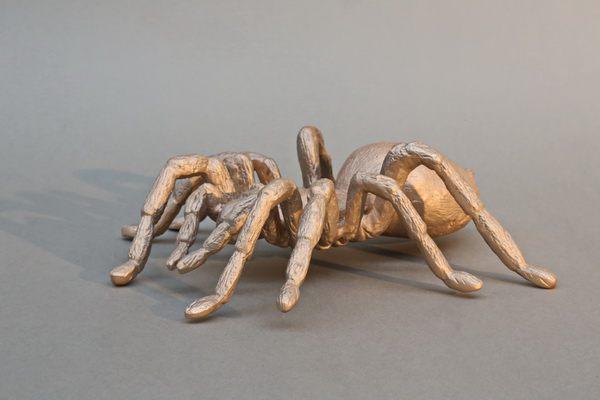 Schon wieder eine Vogelspinne aus Bronze