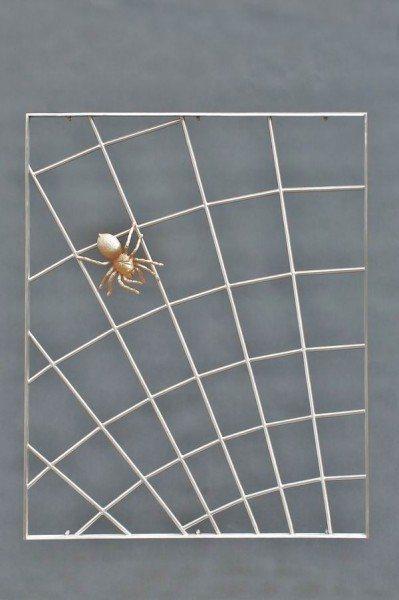 Spinnengitter aus Edelstahl mit einer Bronze Spinne