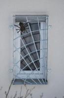 Spinnennetz Fenstergitter mit einer Spinne aus Bronze