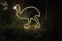 Leuchtender Strauss für den Zoo Hannover