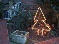 Tannenbaum mit Lichtschlauch