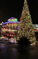 Gigantisch groß und gigantisch viele LED Lichtpunkte. Tannenbaum im Yukon Bay im Zoo Hannover