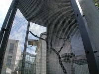 Vogelkäfig für das Prof. König Heim in Hildesheim