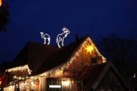 Kamel und Karibu auf den Dächern in Meyers Hof im Zoo Hannover