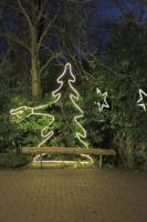 """""""Der weiß wo´s lang geht"""" Leuchtender Tannenbaum"""