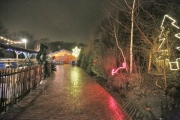 Winterzoo Mullewapp 2012