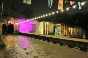 dschungelpalast winterzoo 2012