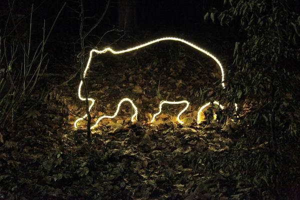 Leuchtender Wombat für den Winterzoo 2011 in Hannover