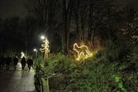 Leuchtender Wolf für den Winterzoo Hannover