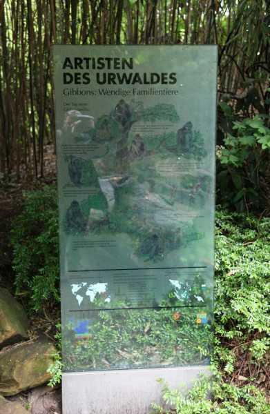 Artisten des Urwaldes, Glasschilder für den Zoo Hannover