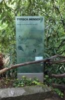 Typisch Mensch, Glasschilder für den Gorilla Berg im Zoo Hannover