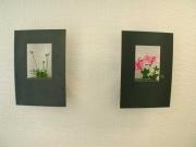 wandhängende kleine Blumenvasen  im gelaserten Stahl Rahmen