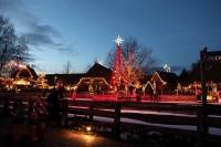 zauberhafte Lichtershow für den Zoo Hannover
